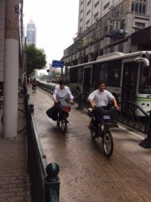 Cycleway separators in Shanghai