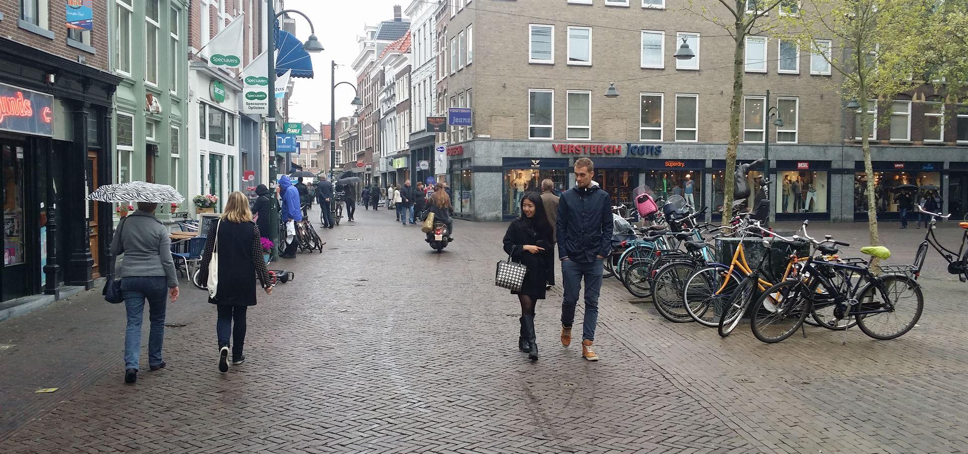 Delft Şehir İçi Ulaşım
